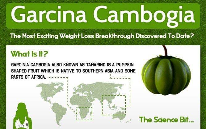 garcinia info preview - Is Garcinia Cambogia the most exciting weight loss breakthrough to date? INFOGRAPHIC