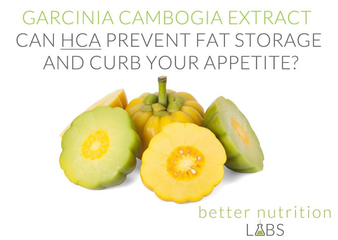 Garcinia Cambogia Extract Can HCA Prevent Fat Storage EN1 - Garcinia Cambogia Extract - Can HCA Prevent Fat Storage and Curb Your Appetite?