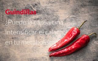 Chilli Peppers Can Capsaicin turn up the heat on your metabolism ES - Guindillas - ¿Puede la capsaicina intensificar el calor en tu metabolismo?