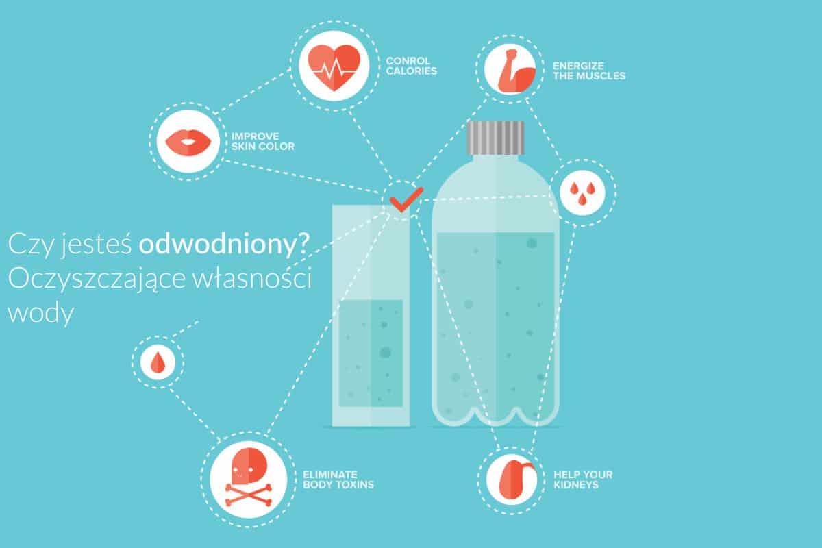 are you dehydrated the detoxifying properties of water PL - Czy jesteś odwodniony? Oczyszczające własności wody